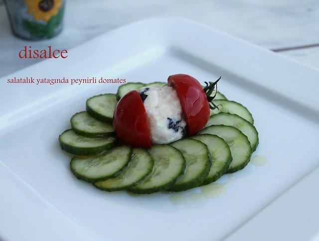 salatalık yatağında domates arası peynir