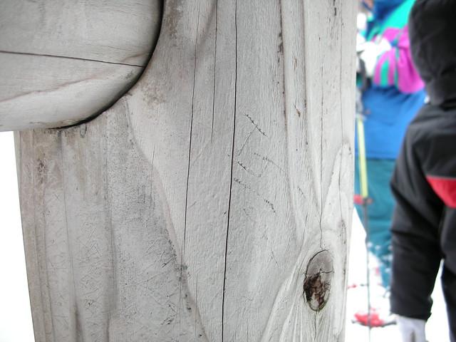 東屋の柱には,テンが登った爪痕があった.