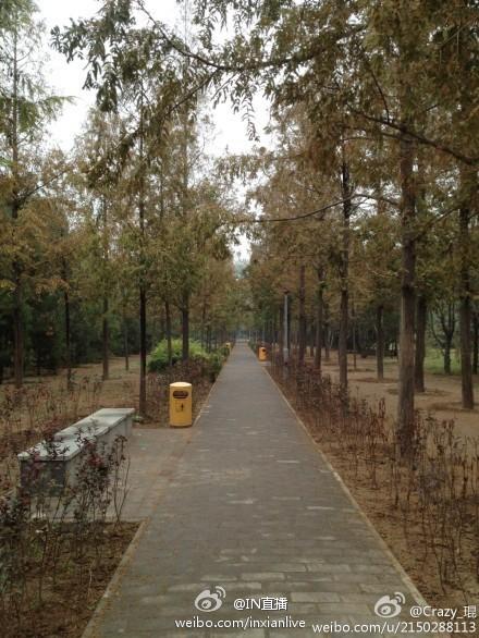 大庆路街心花园