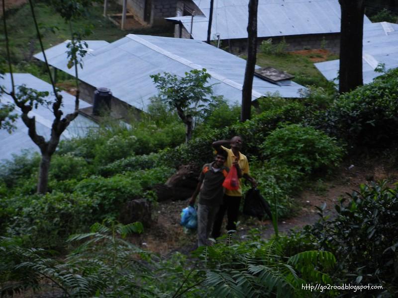 Доброжелательные жители Эллы, Шри Ланка