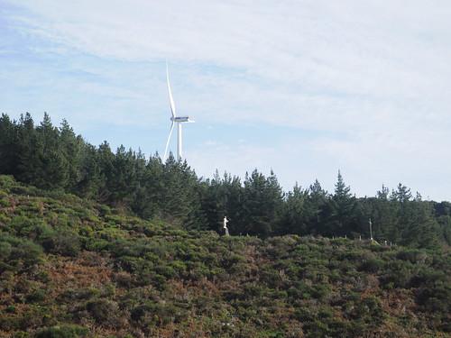 Windmill / Cristo Rei