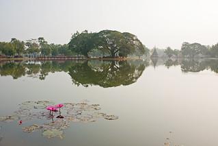 Attēls no  Sukhothai Historical Park pie  Ban Na. canon thailand asia southeastasia december sukhothai oldsukhothai historicalpark 泰国 สุโขทัย ราชอาณาจักรไทย ประเทศไทย 2013 canonefs1755mmf28isusm canon450d อุทยานประวัติศาสตร์สุโขทัย sukhothaimuangkao