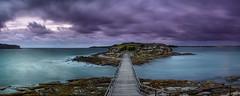 Bare Panorama