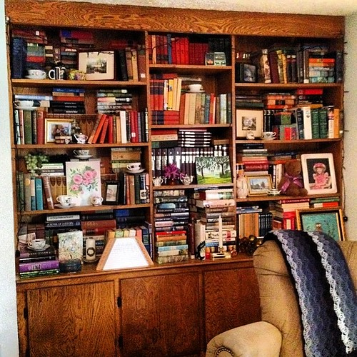 Library bookshelves #shelfie