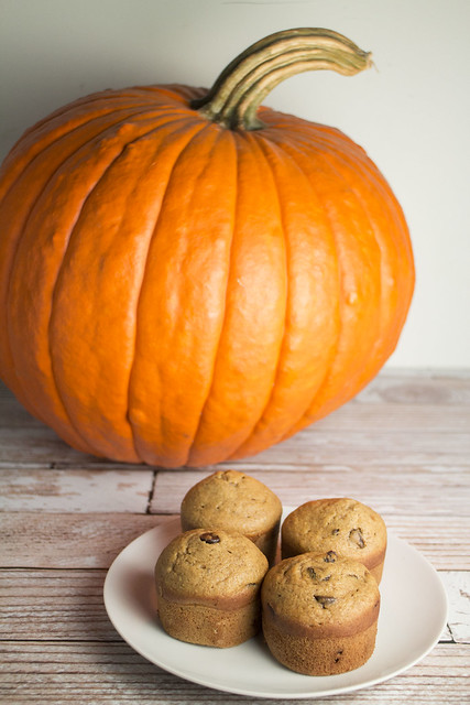 Pumpkin Spiced Chocolate Chip Muffins_3