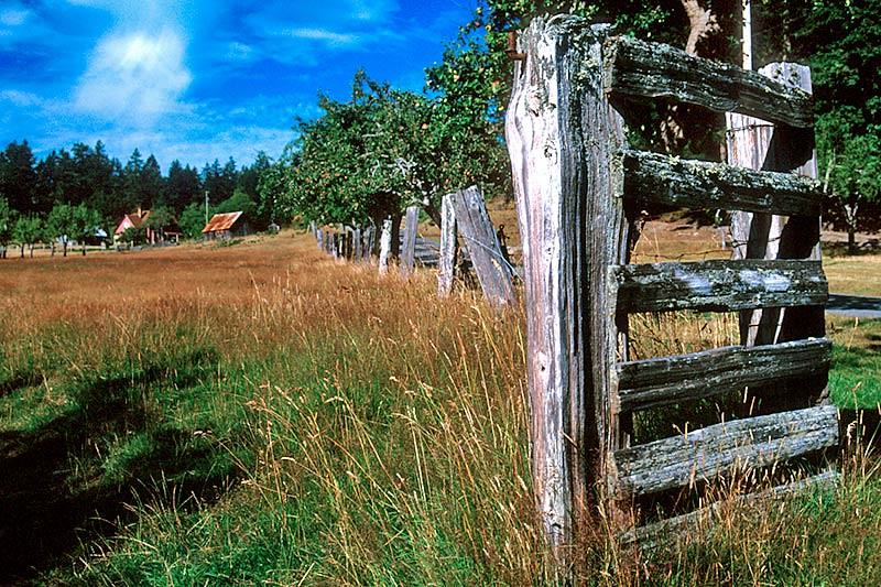 Ruckle Farm, Saltspring Island, Gulf Islands, Georgia Strait, British Columbia, Canada