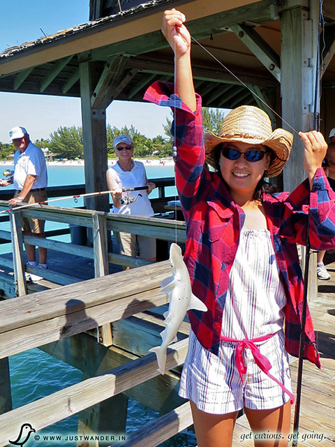 PIC: Fishing at Naples Pier