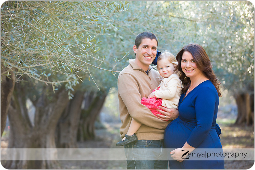 b-B-2014-02-23-08 - Zemya Photography: Bay Area pregnancy photographer
