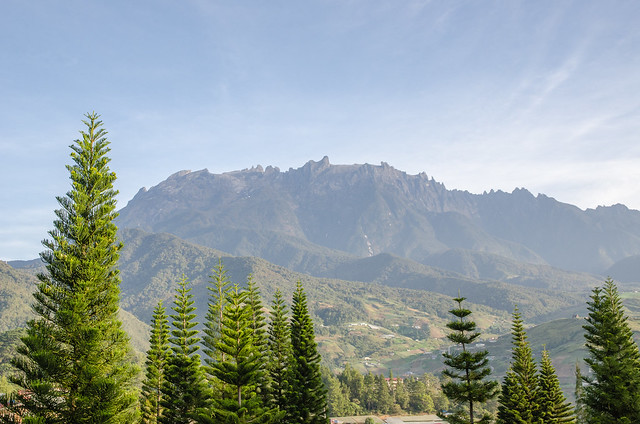 A clear sky allows us to admire the mighty Mount Kinabalu together with the pine trees
