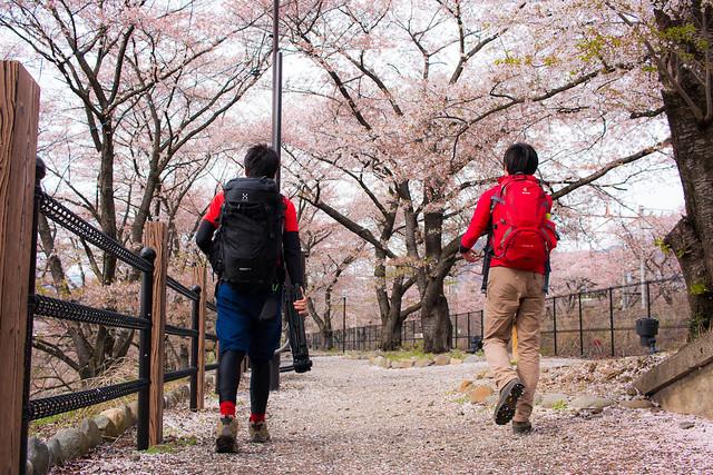 20150412-甲州高尾山-0660.jpg