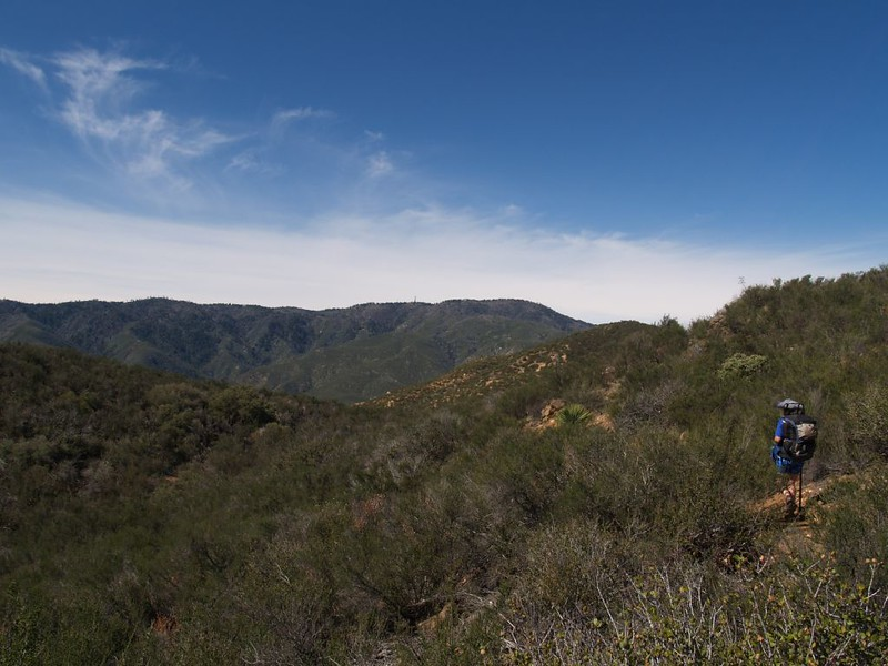 PCT San Felipe Hills - coming across the saddle to the west