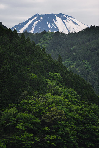 snow mountains green nature japan forest fuji hakone mtfuji 2013 kanagawaprefecture d700 afnikkor300mmf4ed ashigarashimodistrict