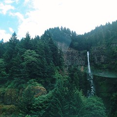 that falls we call multnomah. #drivebyshooting