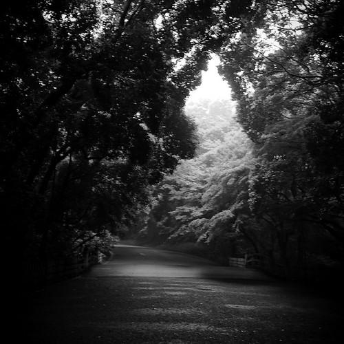 The Way, Meijijingu Path