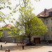 Die Mahlsdorfer Grundschule