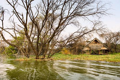 Kenya - Lake Baringo 03