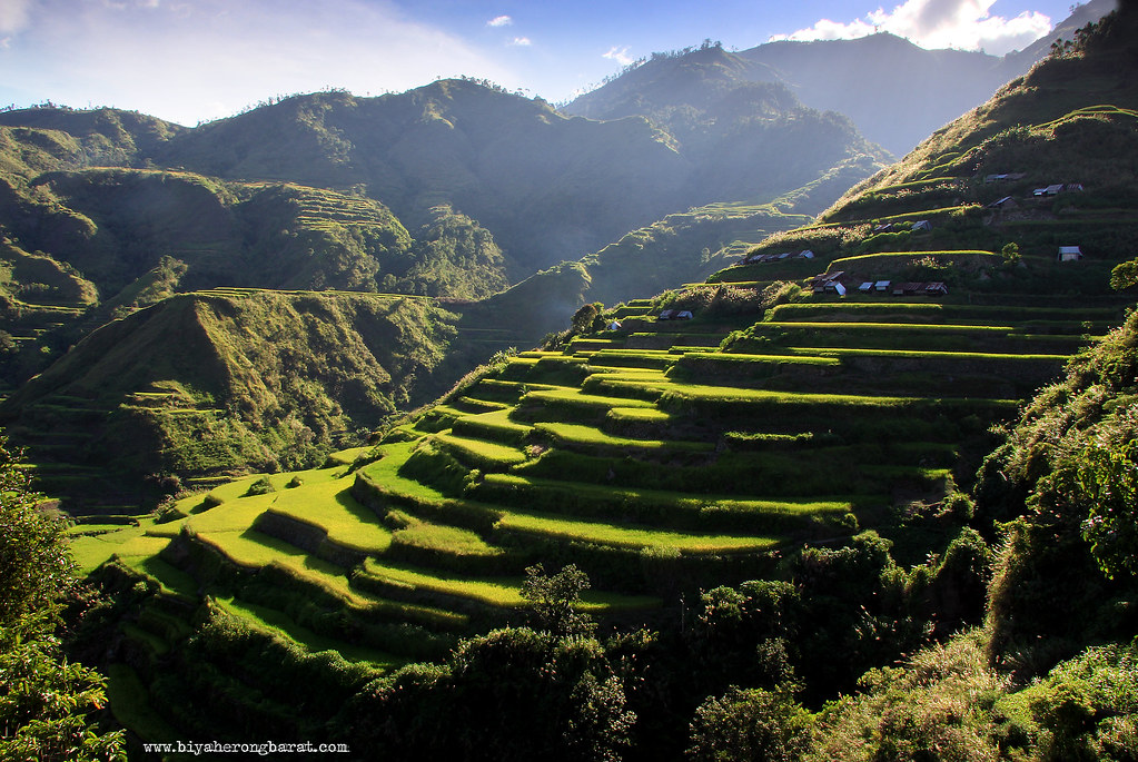 rice terraces in buscalan village tinglayan kalinga cordillera