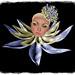 Small photo of Zibska - Ulani Hat-Collar & Careen Eyeshadow