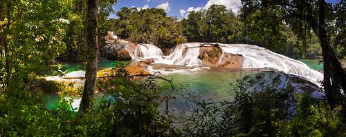 Cascadas de Agua Azul (60)