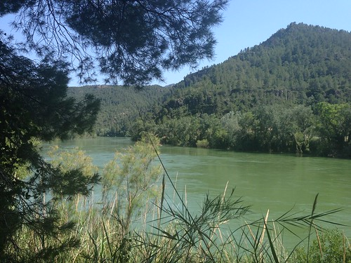 Tough cycle route from Miravet to Benifallet along the riverbank 3