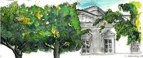 les arbres du Palais de Justice by Stéphane Feray