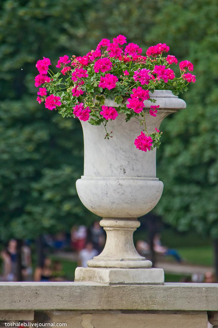 Люксембургские сады-28