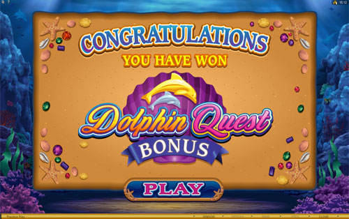 Dolphin Quest Free Spins Feature