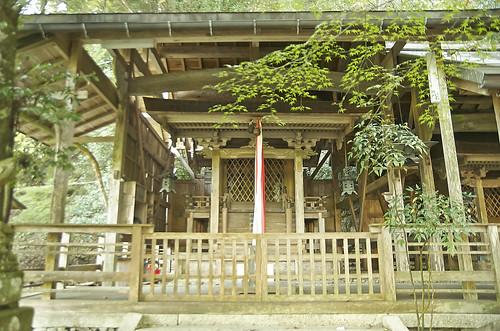 【写真】2013 紅葉 : 岩戸落葉神社/2020-11-23/IMGP3029