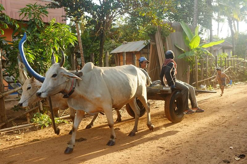 Kampong Thom - 06