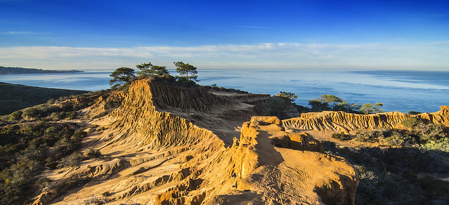 Torrey Pines Reserve In Early Morning Light - Explored