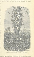 Image taken from page 391 of 'The Natural History of Man; being an account of the manners and customs of the uncivilized races of men ... With new designs by Angas, Danby, Wolf, Zwecker, etc., etc. Engraved by the Brothers Dalziel'