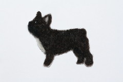 Ranskan bulldoggi