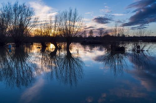 trees winter sunset sky water flooding oxford rivers floods marston cherwell watermeadow smcpda21mmf32al pentaxk01