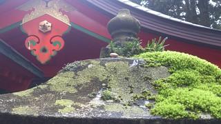 箱根神社・かたつむり