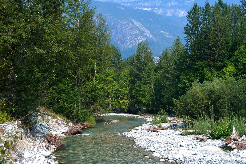 Nooklikonnic River, Hagensborg, Bella Coola Valley, Coast of Central British Columbia