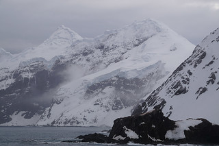 076 Elephant Island - Point Wild