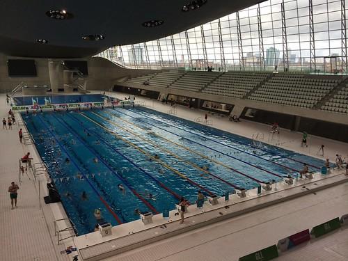 61/365 Olympic pool swim