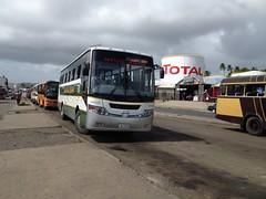 photo 74/365/2015 - HJ873 Island Buses