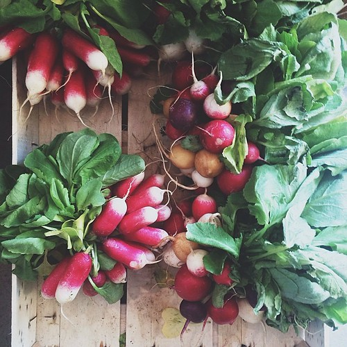 beautiful radishes at @general_store in peckham.