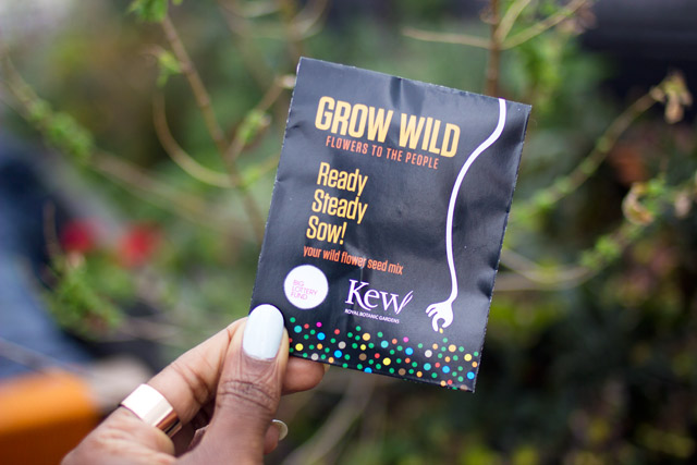 Grow Wild seed planting gig with Neon Jungle