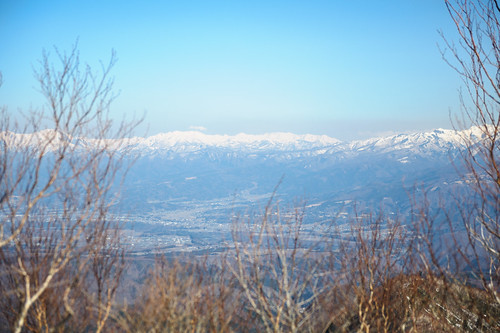 blue trees snow mountains japan landscape birch maebashi gunma 2014 mtakagi d700 afsnikkor2470mmf28ged