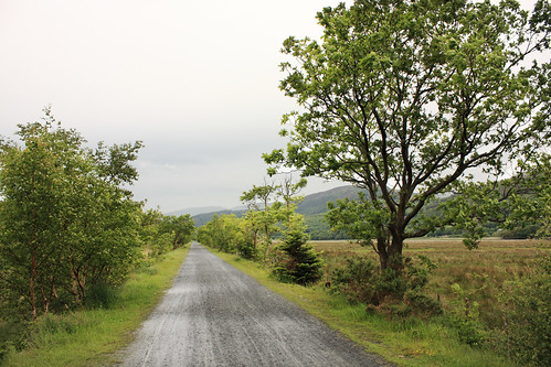 Old railway line (Mawddach Trail)