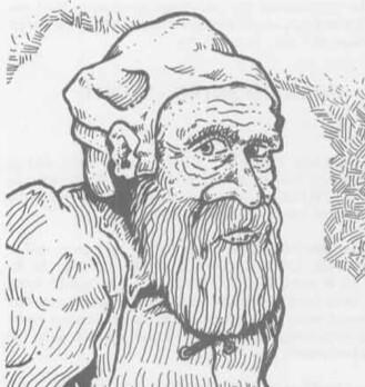 Kusnir の村長