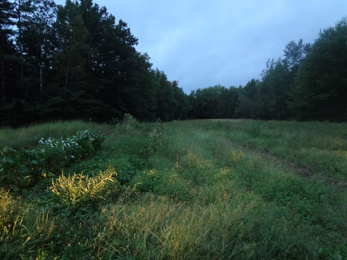 finalrune posted a photo:	Day 1 9/8/12 - Field recording for The Cleansed: Season 2 at Wolf Pine Farm in Alfred, Maine