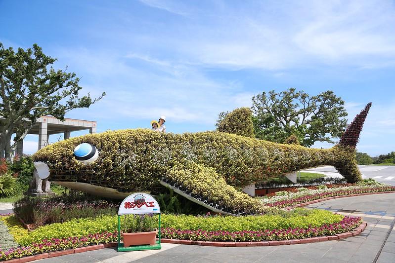 站到花草鯨魚觀景台上