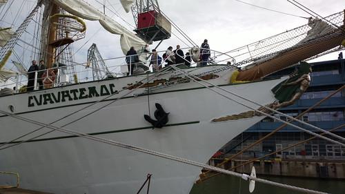 ARM Cuauhtémoc en Tall Ships Races Helsinki