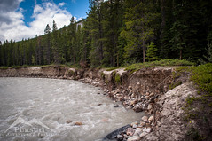 Coral Creek