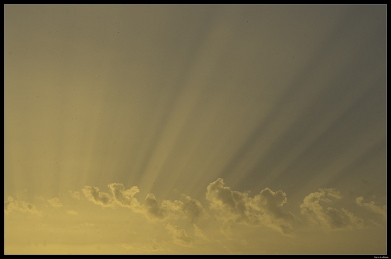 (NATURE: Paysage/Parc/Flore) Lumière divine... 9422594923_6b077f974c_c