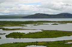 swamp(0.0), plateau(0.0), reflection(0.0), wetland(1.0), estuary(1.0), floodplain(1.0), mountain(1.0), reservoir(1.0), tundra(1.0), plain(1.0), loch(1.0), lake(1.0), highland(1.0), natural environment(1.0), shore(1.0), fell(1.0), landscape(1.0), wilderness(1.0), salt marsh(1.0), grassland(1.0), bog(1.0),