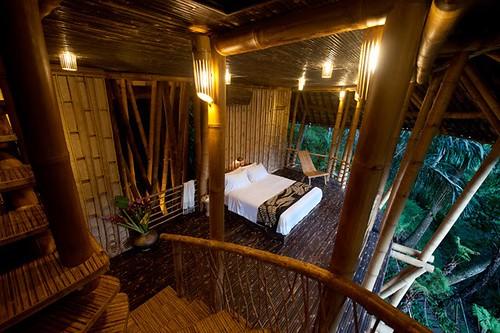 Bambus House v08